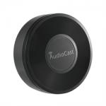Audiocast music streamer